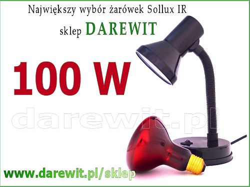 fe37ea89e4ba7 Lampa Sollux 100W - domowa rehabilitacja - na zatoki, na katar, na ...