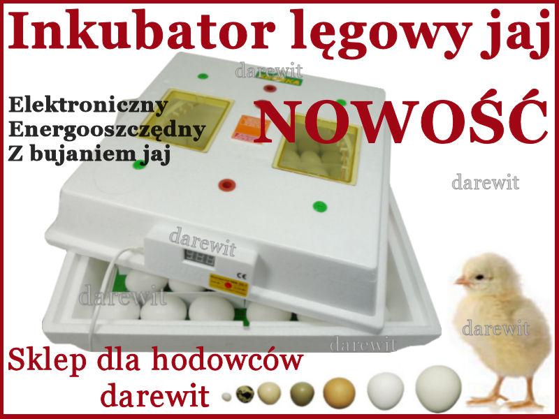 Domowy tani inkubator do jaj nie przedsiębiorczości - darewit