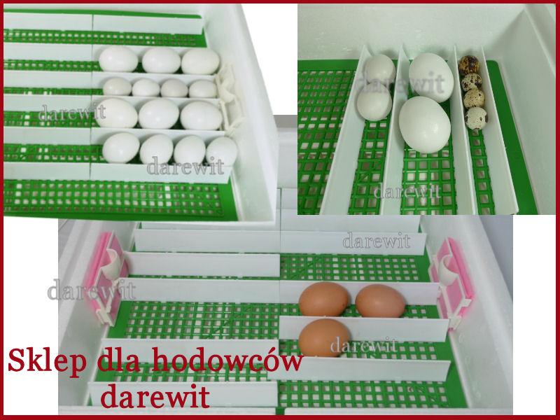 wylęganie różnych jaj w jednej inkubacji - sklep darewit