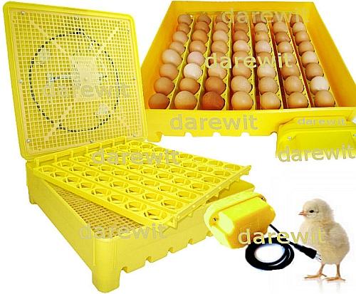 inkubatory Darewit - inkubator automatyczny do wylęgu jaj