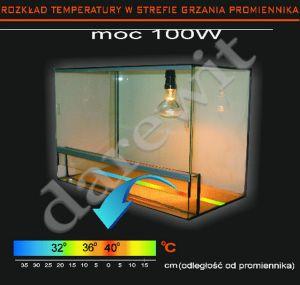 rozkład temperatury w terrarium