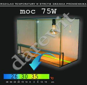 rozkład temperatur w terrarium, moc białej żarówki 75W