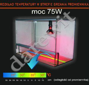 grzewczy promiennik 75W - temperatury w terrarium