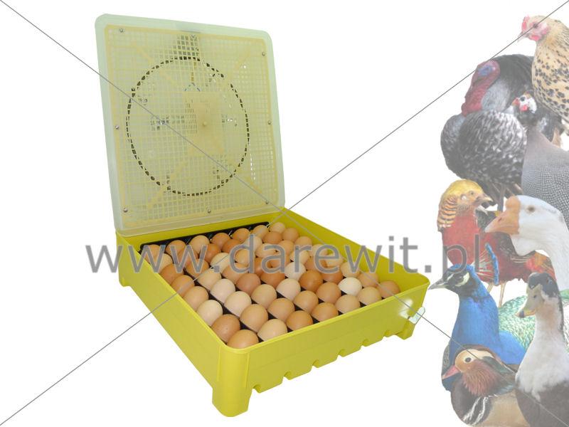 Wylęgarka jaj kurzych półautomat elektroniczna, 56 jaj