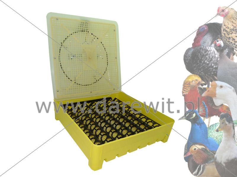 Półautomatyczny Inkubator jaj - wyświetlacz temperatury