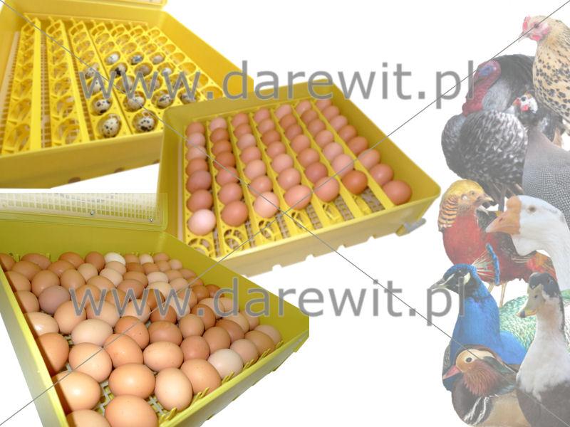 mały pojemny inkubator jaj dla kur perliczek i innych