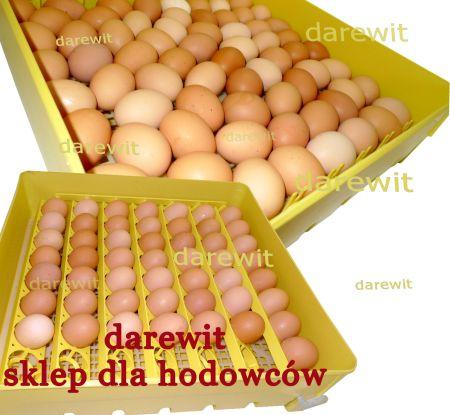 inkubator z obracaniem jaj