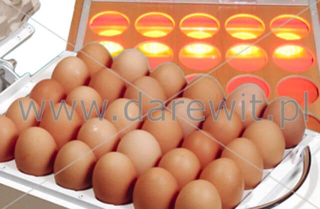 prześwietlarka na 30 jaj, owoskop,  darewit