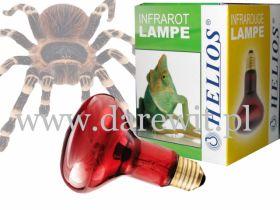 żarówka grzewcza z podczerwienią dla gadów, promiennik rubinowy czerwone światło