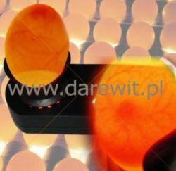 kontrola embrionu w inkubowanych jajach
