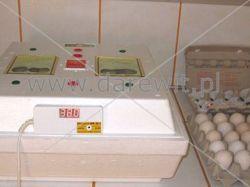 nagrzewanie inkubatora