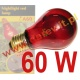Night Heat 60W, NightGlo Red Reptile Bulb, 60W żarówka nocna do terrarium