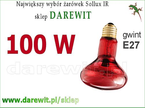 PROMIENNIK PODCZERWIENI żarówka Infrared Sollux 100W R80