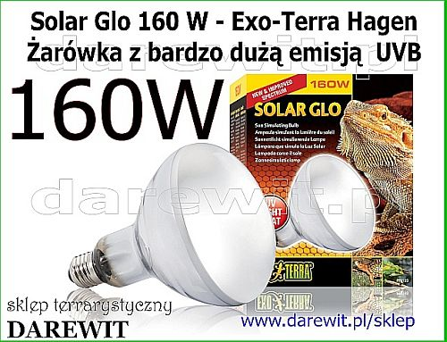 Solar Glo 160 W Żarówka Exo Terra